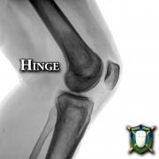 Knee Hinge xray